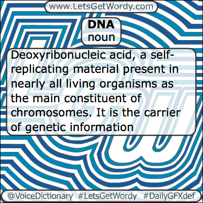 DNA 02/28/2013 GFX Definition of the Day