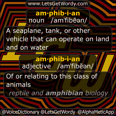 Amphibian 11/11/2012 GFX Definition of the Day